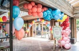 organgic balloon garland